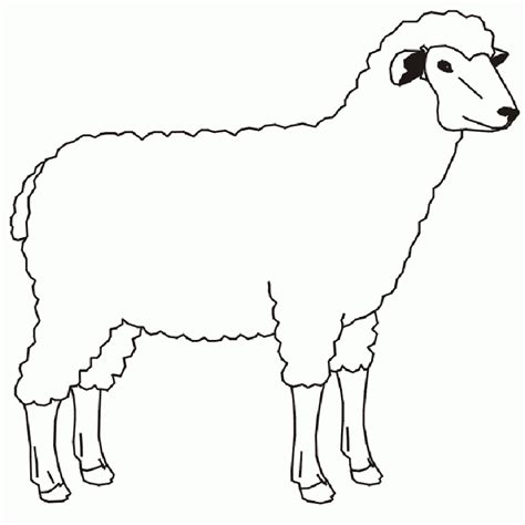 printable coloring pages domestic animals domestic animals coloring pages for kids az dibujos para