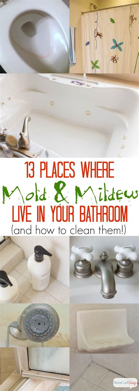 how to get rid mold in the bathroom how to get rid of mold in the bathroom home design ideas and architecture with hd