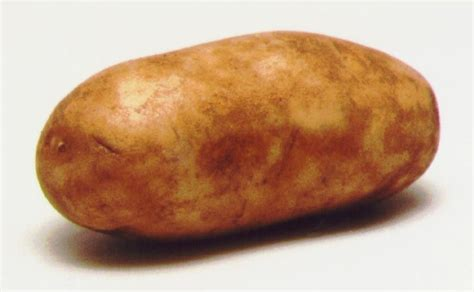 Potato Pictures by Potatoes And You Part 1 Introduction