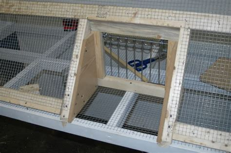 Pigeon Trap Door Design by 69 Best Images About Pigeon Lofts On Cover Ups