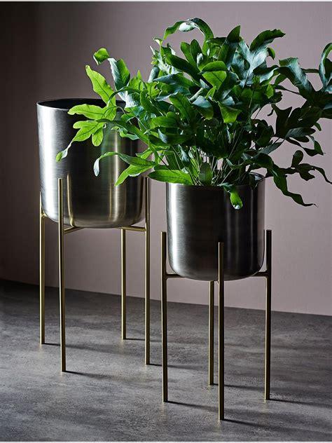 design project  john lewis  indoor planter