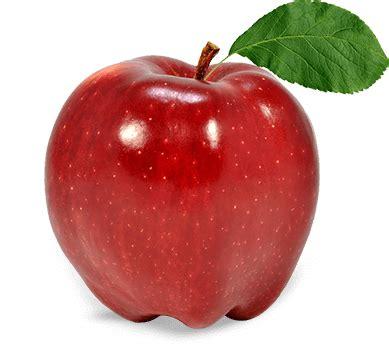 fruit apple history of apple