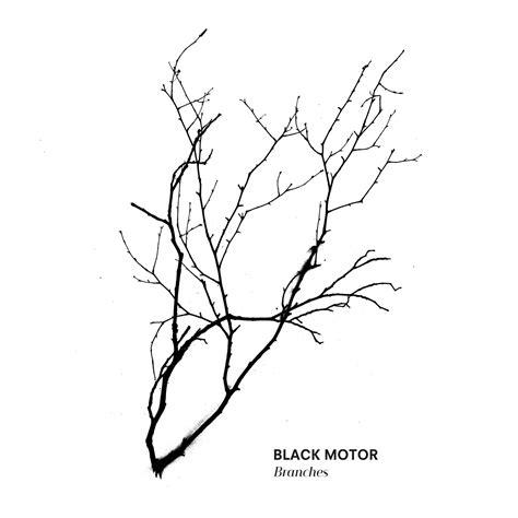 branches black motor kudos records