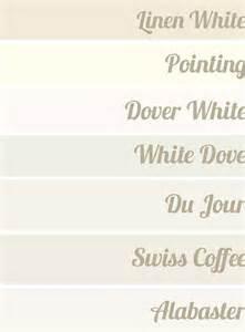 best 25 sherwin williams dover white ideas on pinterest