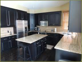 Kitchen Runners For Hardwood Floors by Maple Kitchen Cabinets With Dark Wood Floors Home Design