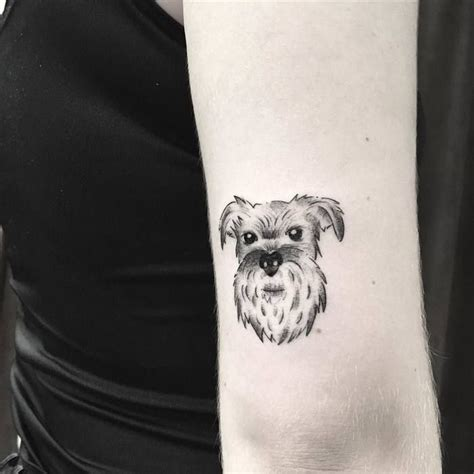 schnauzer tattoo 154 best animal tattoos images on