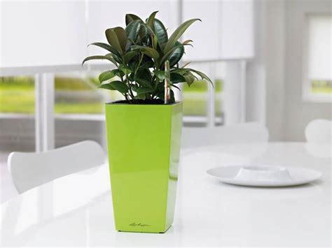vasi d arredamento vasi arredo soggiorno ispirazione design casa