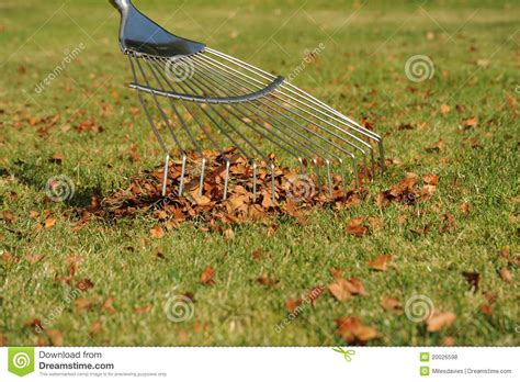 Landscape Rake Leaves Lawn Rake And Autumn Leaves Royalty Free Stock Photos