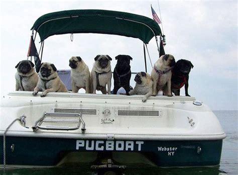 funny boat names 24 pics funny boat names 24 pics