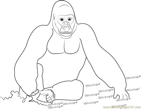 free coloring pages of king kong king kong gorilla coloring page free gorilla coloring