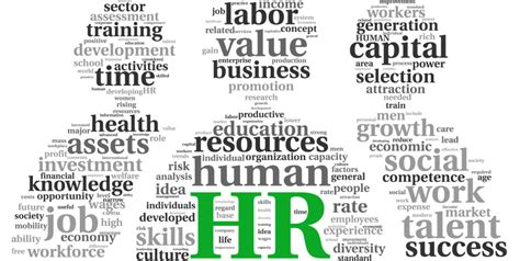 human resources degree human resource management degrees