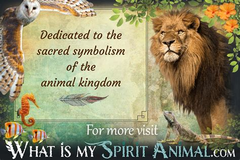 test animale guida spirit totem power animal meanings