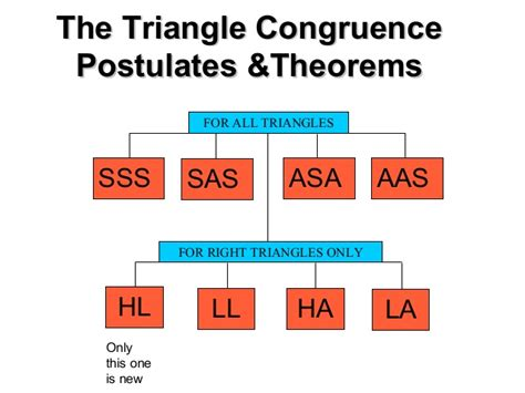 höll dekor 4 4 4 5 5 2 proving triangles congruent