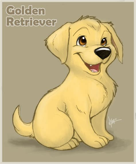 how to draw a golden retriever easy how to draw golden labrador
