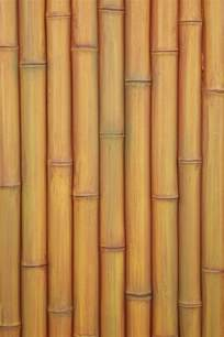 bamboo panels bamboo products photo