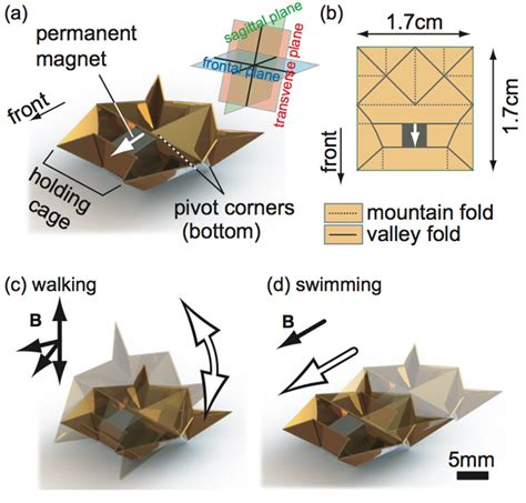 origami robots self folding mini origami robots are the nanosurgeons of
