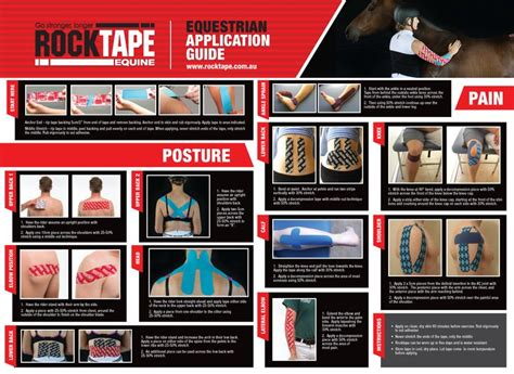 kinesiology taping for horses the complete guide to taping for equine health fitness and performance books equestrian application guide kinesiology equine