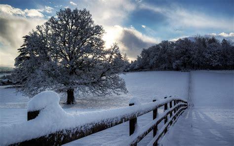 imagenes de invierno navideñas imagenes de invierno newhairstylesformen2014 com