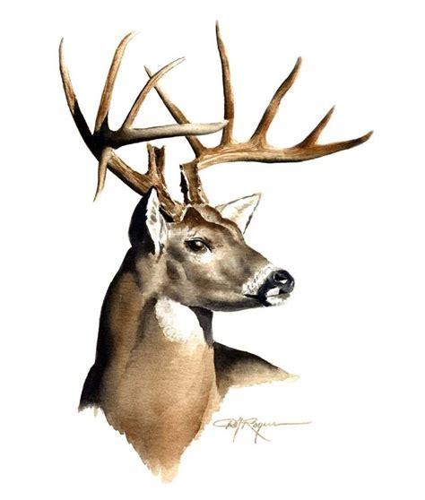 buck image 17 best ideas about deer on deer drawing