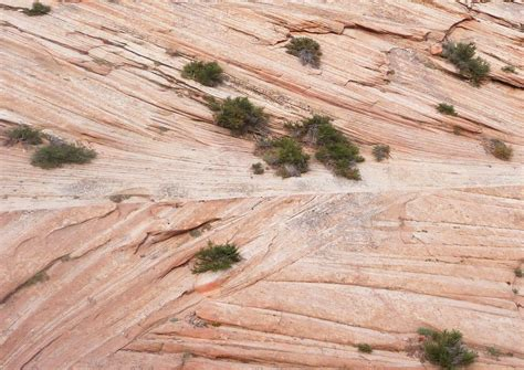 What Is Cross Bedding by Sandstone Cross Bedding The Cross Bedding Found In The