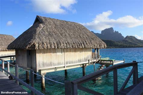 island bungalow vacations pin by bora bora on sofitel island resort bora