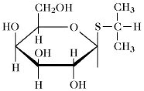 induktor biochemie beta galactosidase lexikon der biochemie