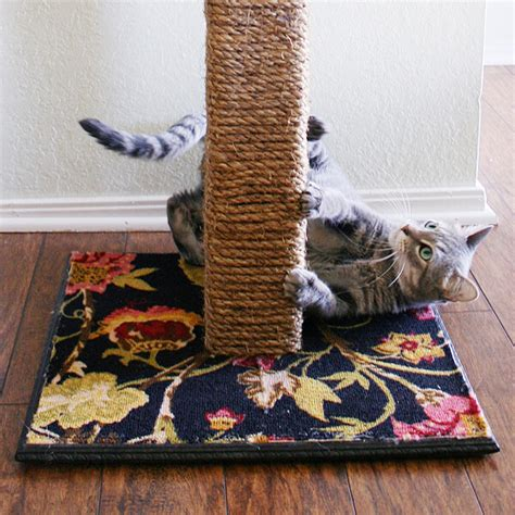Diy Cat Toys From Marmalade by Diy Cat Scratching Post A Bigger