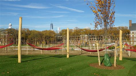 Hammock Park let the countdown begin tree to be planted next week governors island