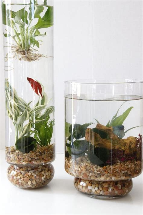 Indoor Water Garden 15 diy indoor water garden ideas home design and interior