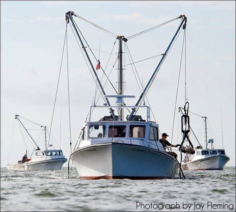 living on a boat in maryland 23 best deadrise images on pinterest chesapeake bay