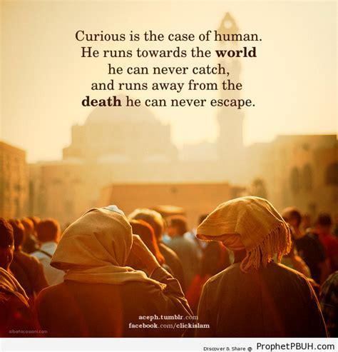 Curiosity Angelxs By Huta Media islamic quotes quotesgram
