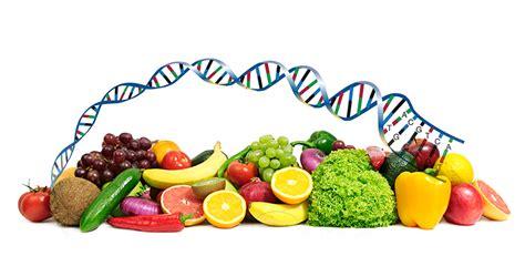 test intolleranze alimentari bologna test per intolleranze alimentari e dieta a palermo