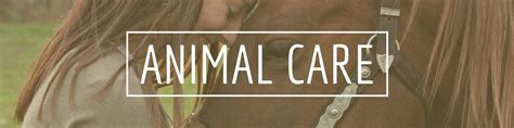 Two Way Care A two way radios for animal care twowayradiocenter