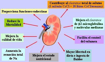 Kidney Infection Di 225 Lisis Peritoneal Aguda En Pacientes Con Enfermedad