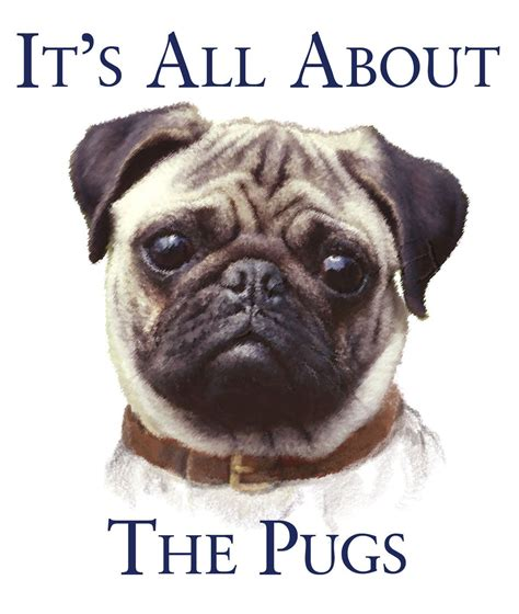 pti the sweet life on pinterest 38 pins pug quotes on pinterest cute pug puppies funny pugs and