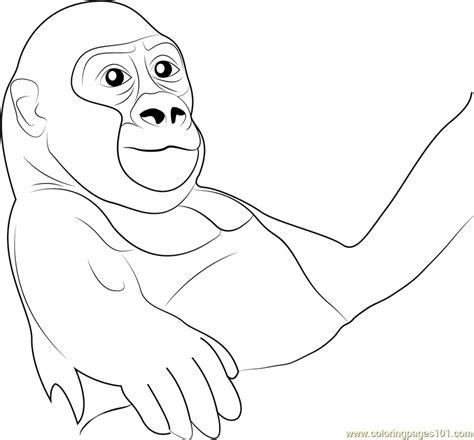 baby gorilla coloring page baby gorilla coloring page free gorilla coloring pages