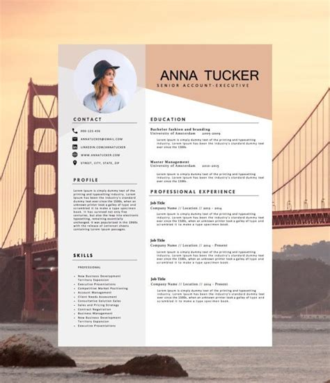 Creative Cv Templates by Best 25 Cv Template Ideas On Creative Cv