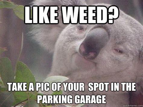 High Koala Meme - high koala memes