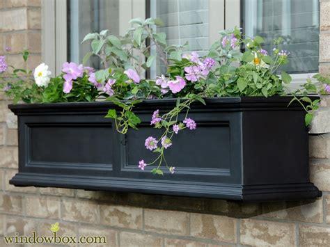 self watering window box prestige window box black self watering window boxes