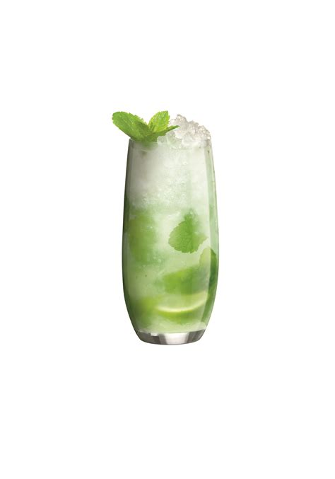 bacardi mojito celebrate national rum day fun day with bacardi tipsy