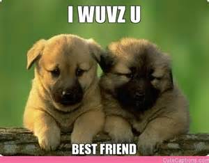 Photos funny best friend pictures with captions funny best friends