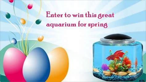 Aquarium Giveaway - kollercraft spring aquarium kit giveaway familysavings