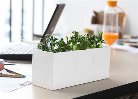 set of 3 white plastic planter set feelgift