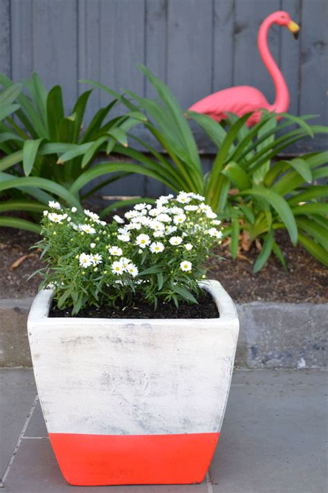 design your own flower pots make your own neon stripe flower pot checks and spots