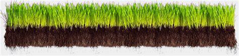 grass section grass cross sections u s rare earth minerals inc