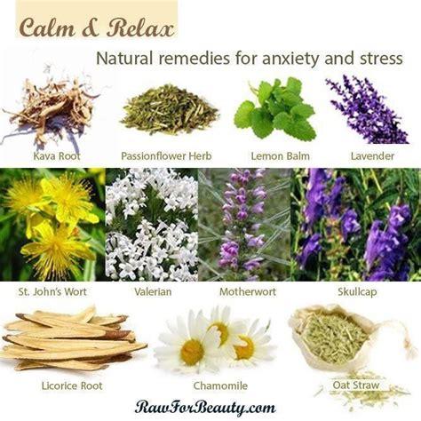 remedies for anxiety remedies for anxiety and stress vegan lifestyle