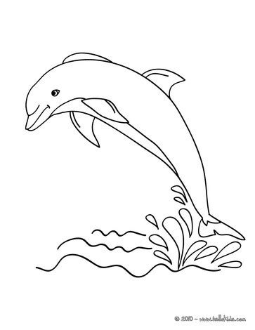 Dolphin Out Coloring Pages Hellokids Com Dolphin Coloring Pages To Print Out