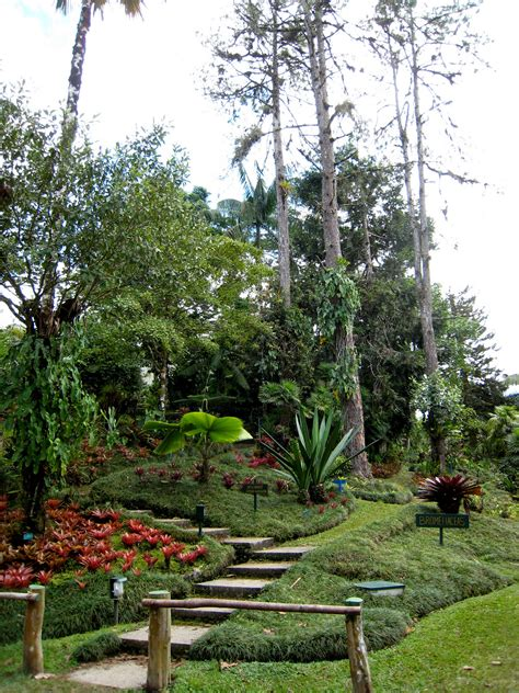 Wilson Botanical Gardens Wilson Botanical Gardens Las Cruces Ots