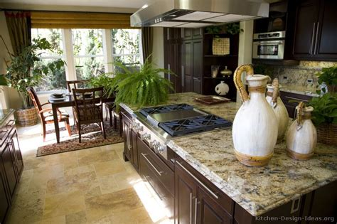 kitchen decorating ideas for countertops pictures of kitchens traditional dark wood nearly black kitchen 2