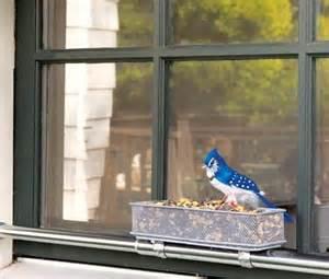 windowsill bird feeder pin by mackenzie on amazing house